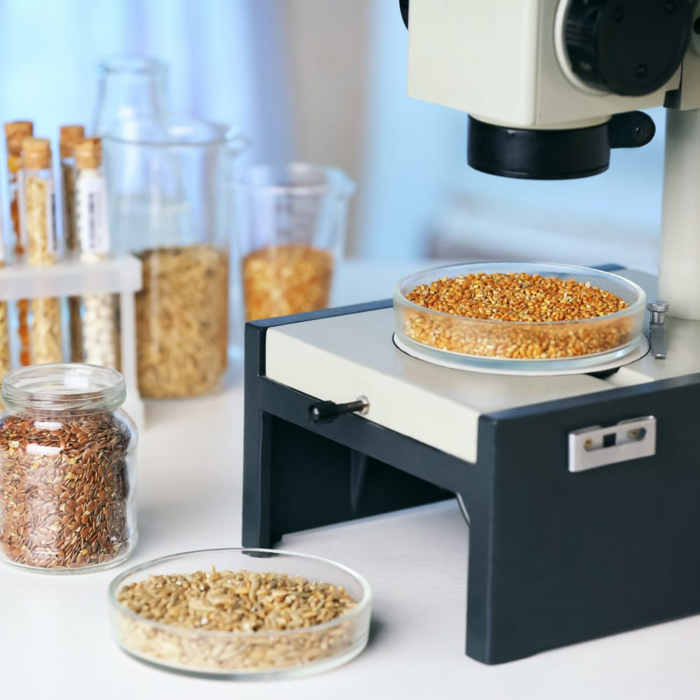 Cereals in laboratory glassware on table
